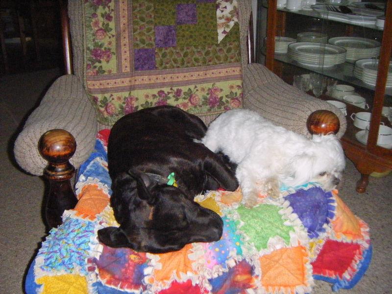 Lister & Ollie 2
