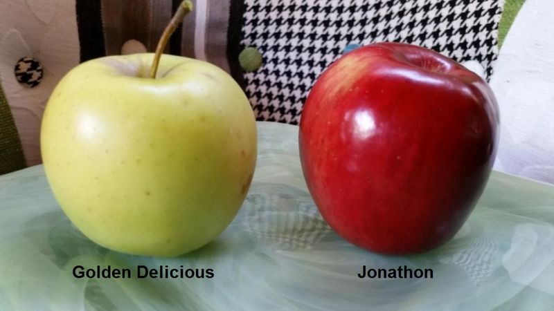 Golden Delicious & Jonathon