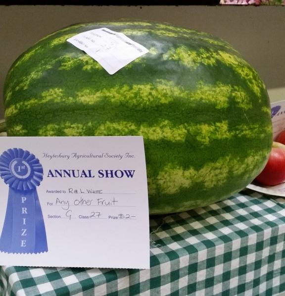 Watermelon prize