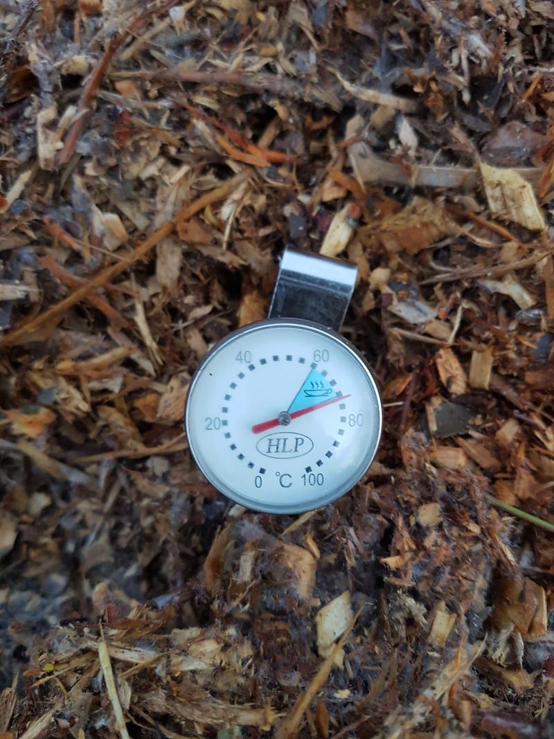 Mulch temperature
