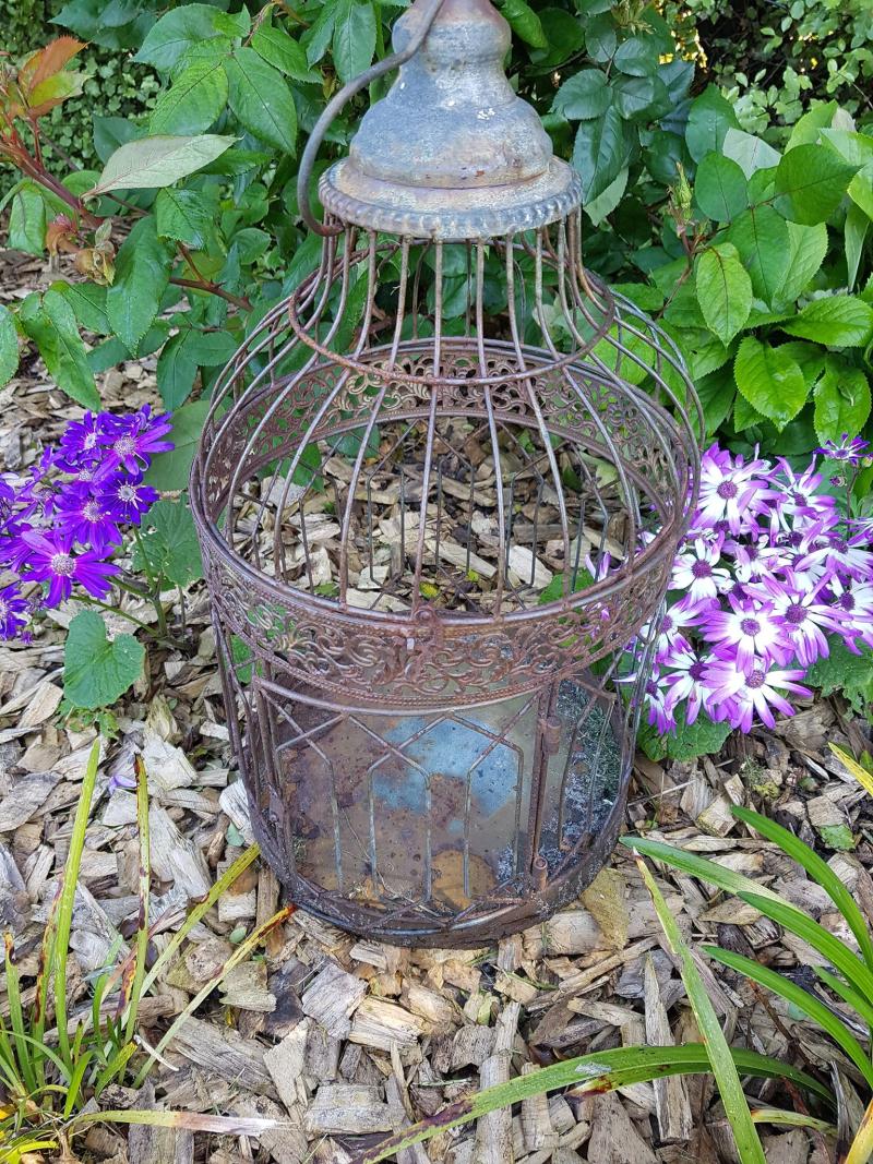 Garden Bird cage empty
