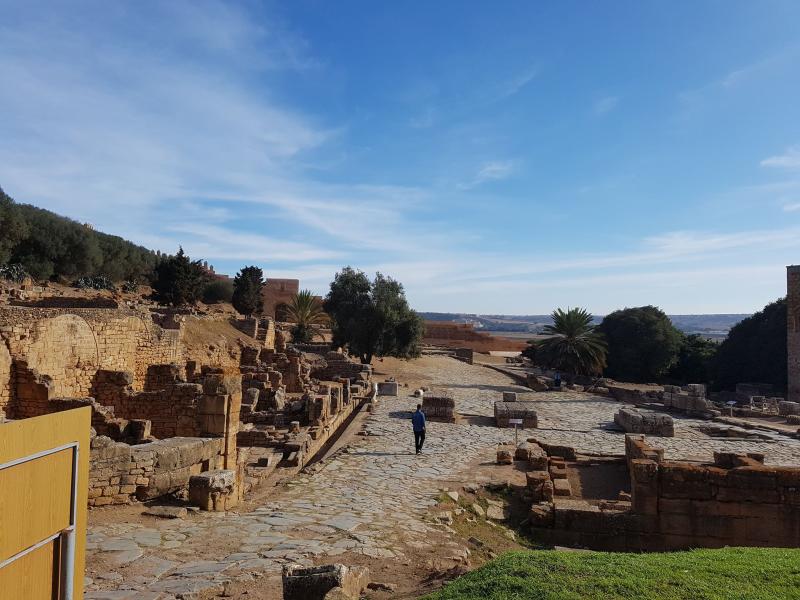 Chellah roman relics