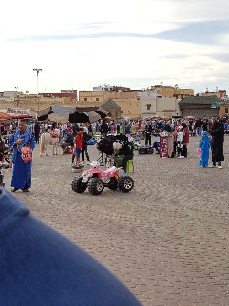 Meknes Hedim Square
