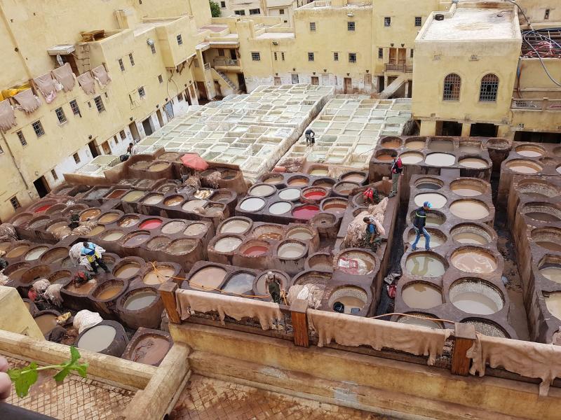 Fez medina tannery