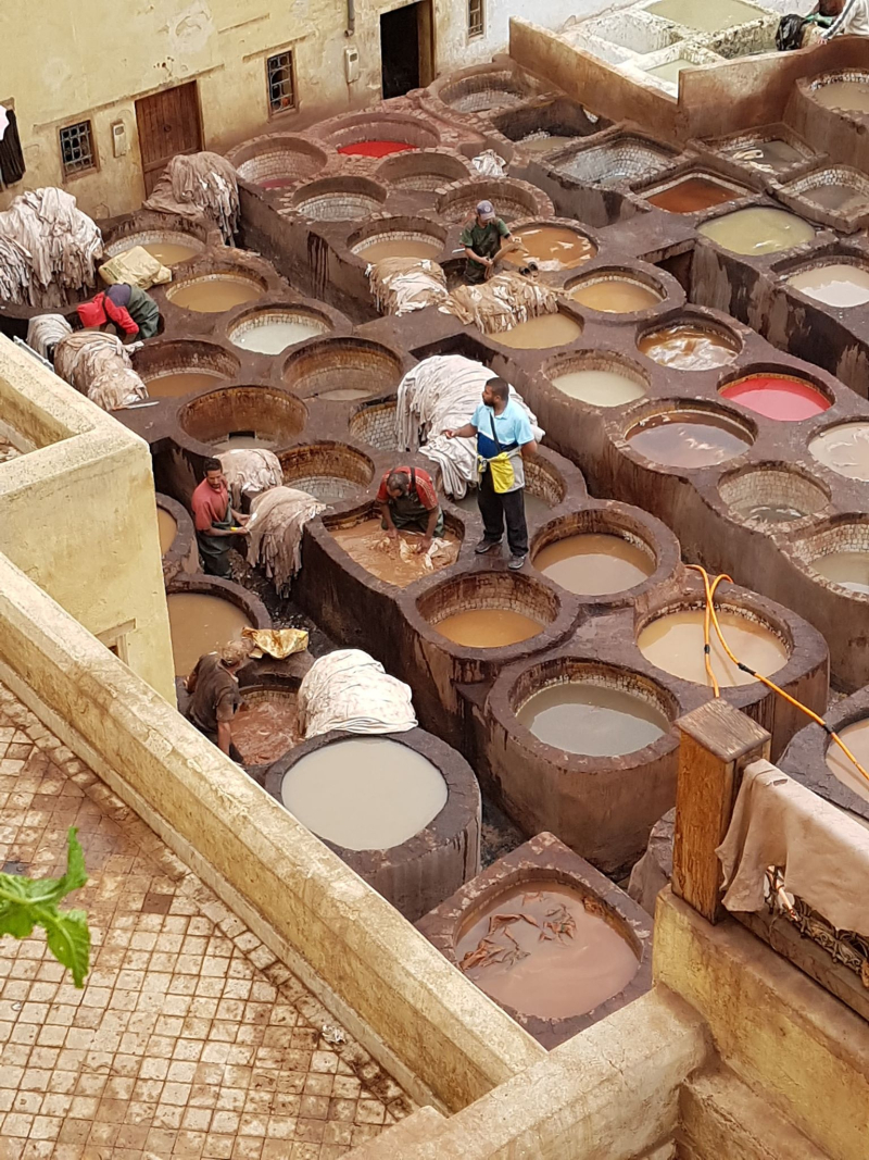 Fez medina tannery 2