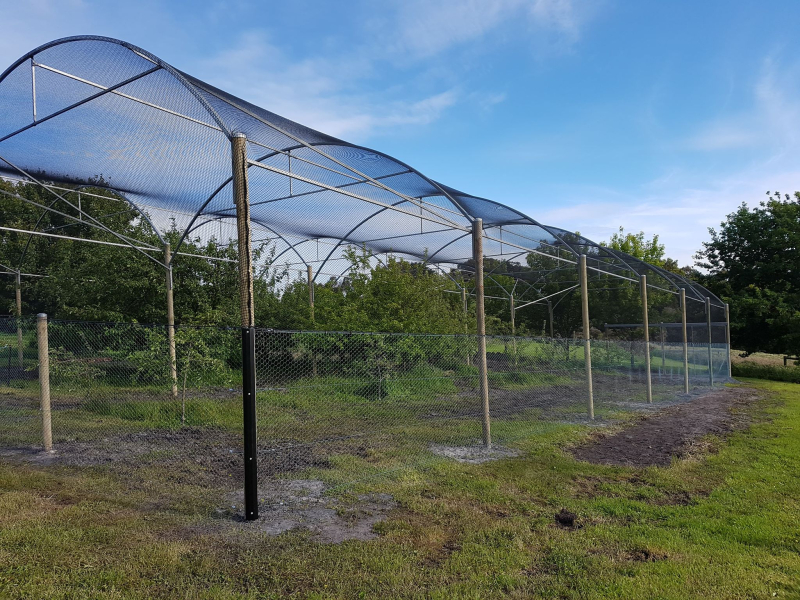 Orchard structure side fence