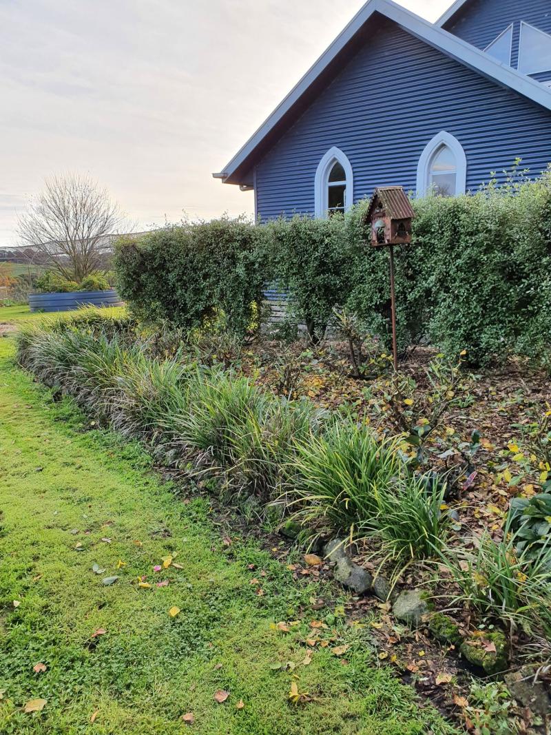 Lockdown gardening 3